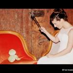 mariée baguette magique crapaud