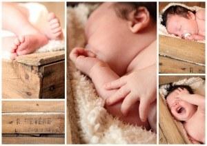 composition bébé cagette