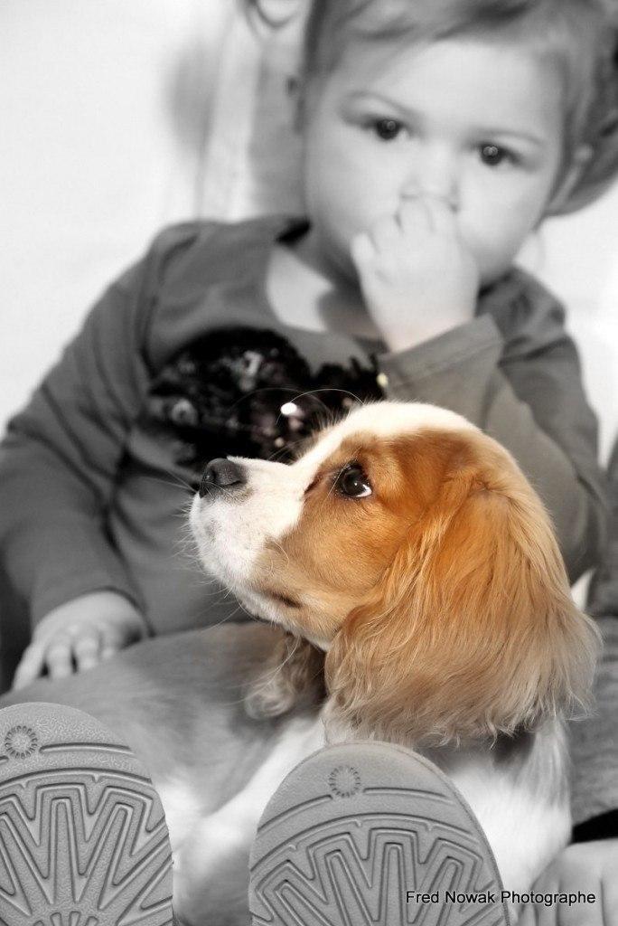 bébé avec bébé chien, photo de famille aix en provence par fred nowak photographe professionnel